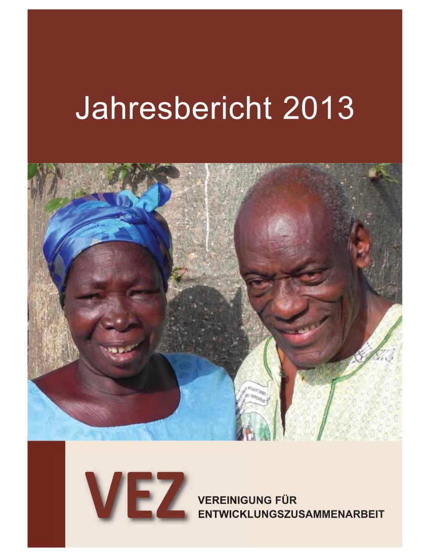 VEZ Jahresbericht 2013