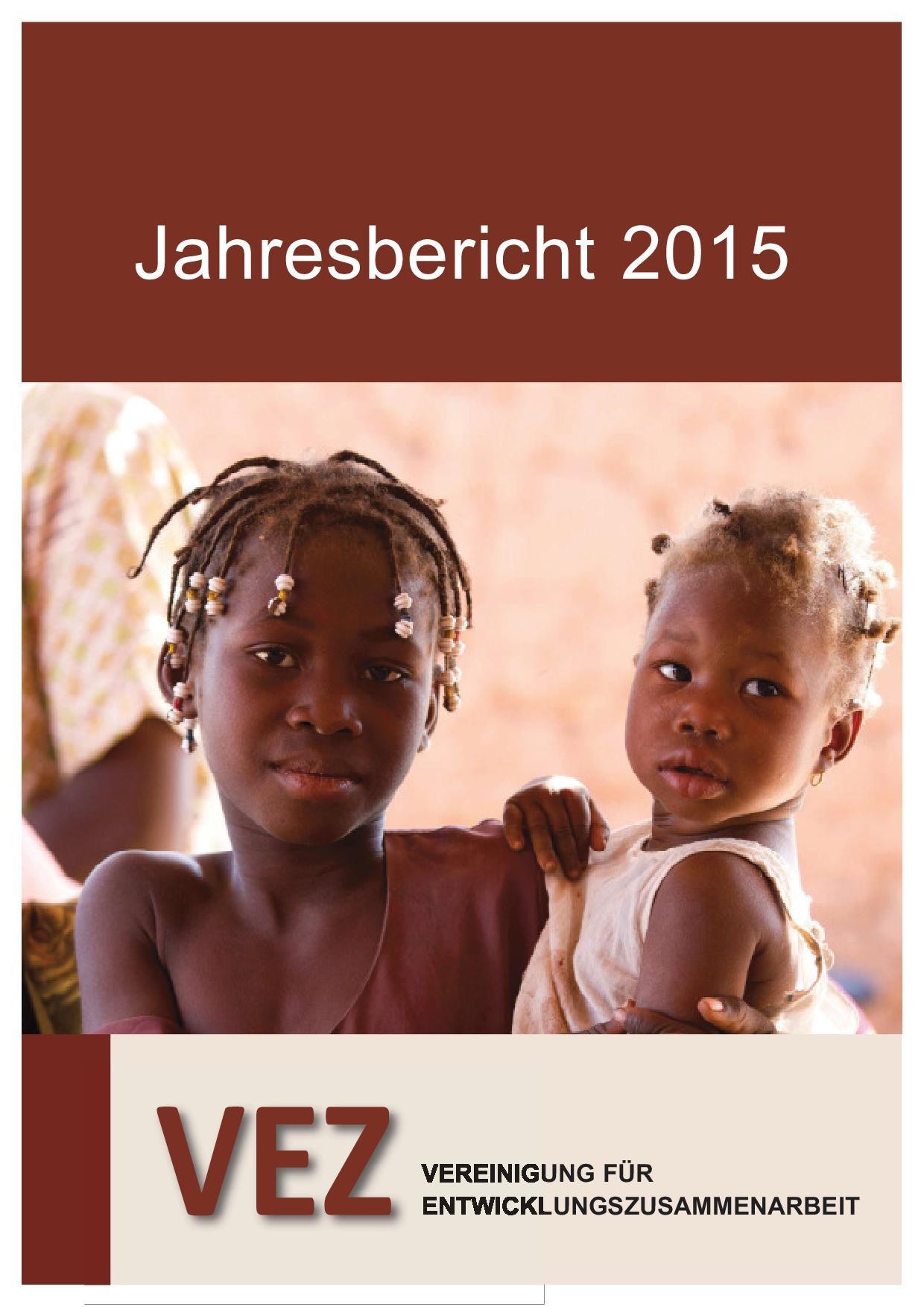 VEZ Jahresbericht 2014 / 2015